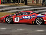 2015 British GT Brands Hatch No.024