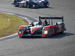 2009 Le Mans Series Silverstone No.086