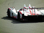 2011 Le Mans Series Silverstone No.137