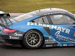 2013 FIA World Endurance Championship Silverstone No.079